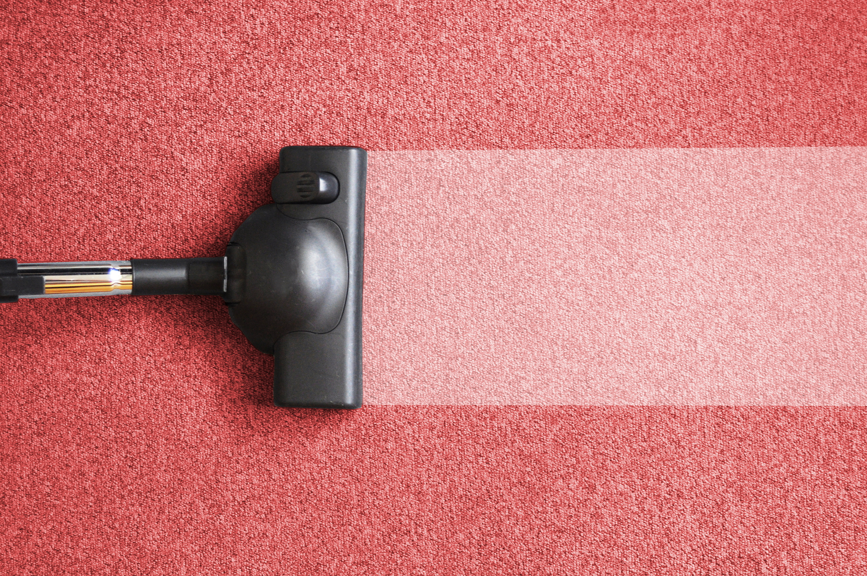 What Research About Cleaners Can Teach You